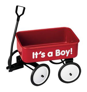 Vive le Wagon de bébé de Teleflora - Garçon