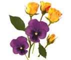 Yellow Roses and Violets