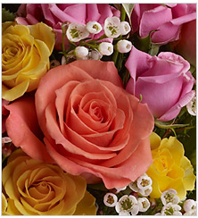There Are Four General Seasons Occurring On Earth Spring Summer Autumn And Winter Most Flowers Season Specific