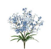 What wedding flowers are in season in spring teleflora tweedia mightylinksfo